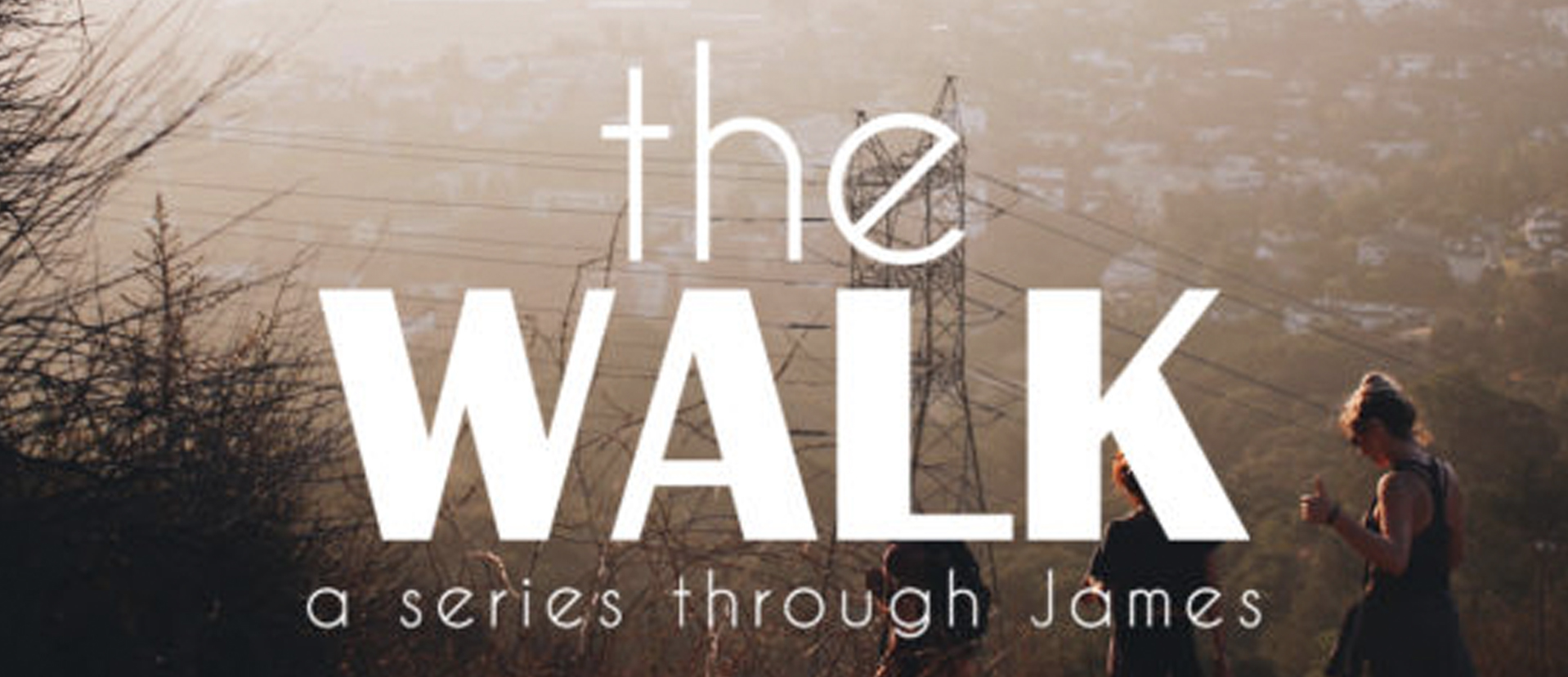 Website_Series_Header_The_Walk.jpg