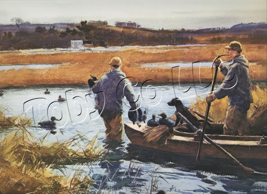 Setting Out Decoys