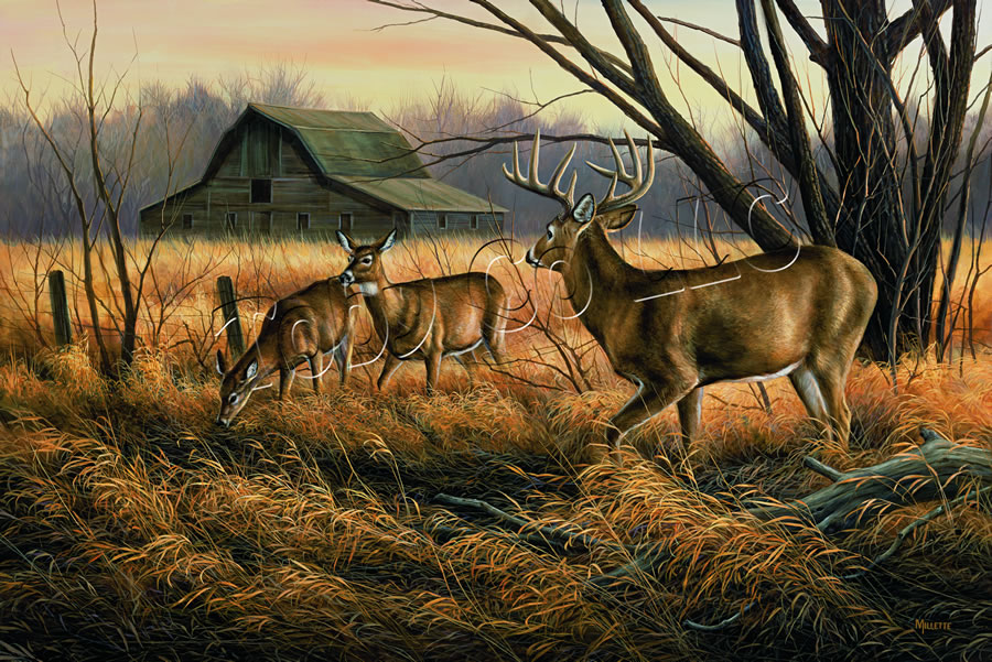 """Abandoned Farmstead- Whitetail Deer"""