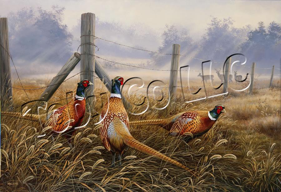 """""""Meadow Mist - Pheasants"""""""