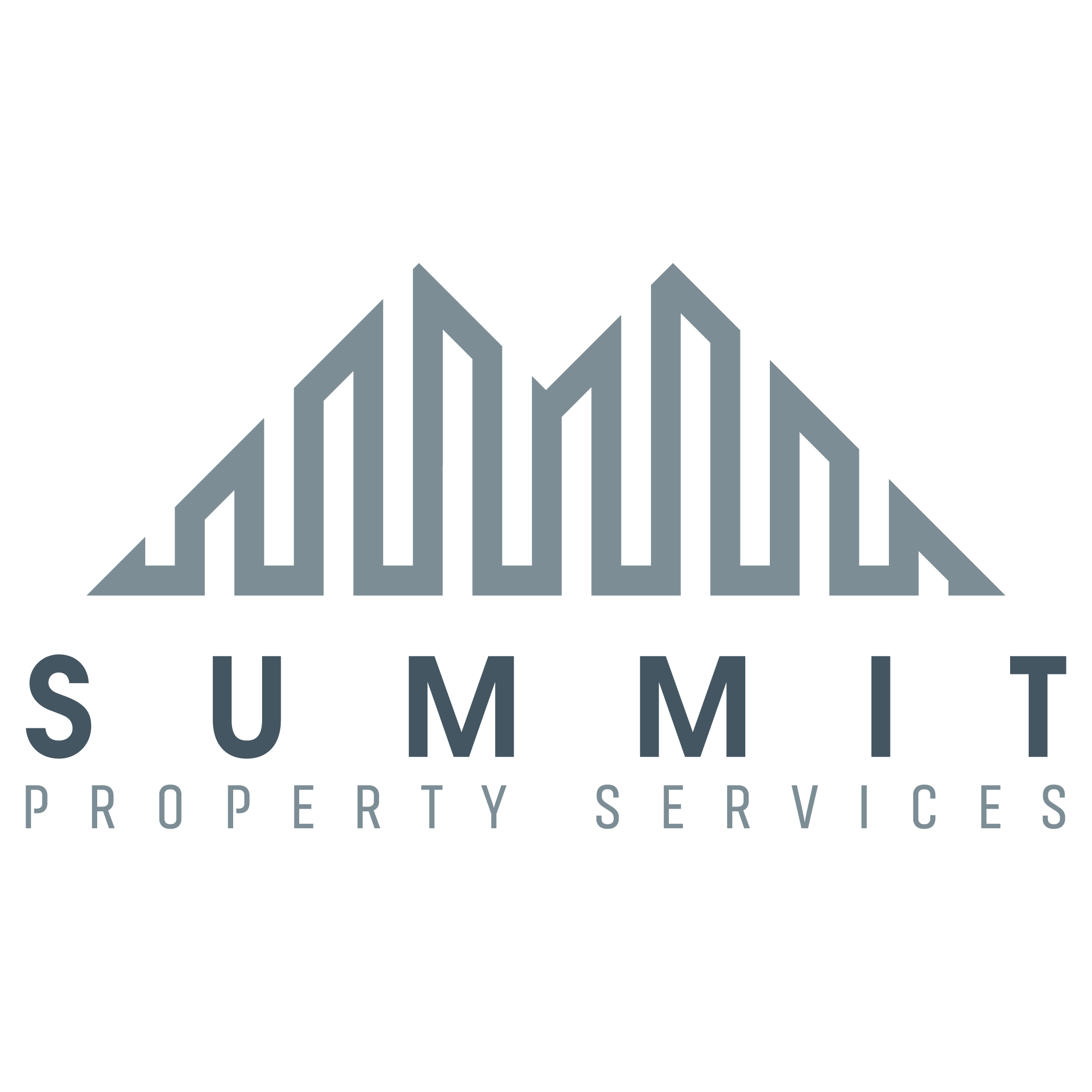 Summit-Logo-Ba.png