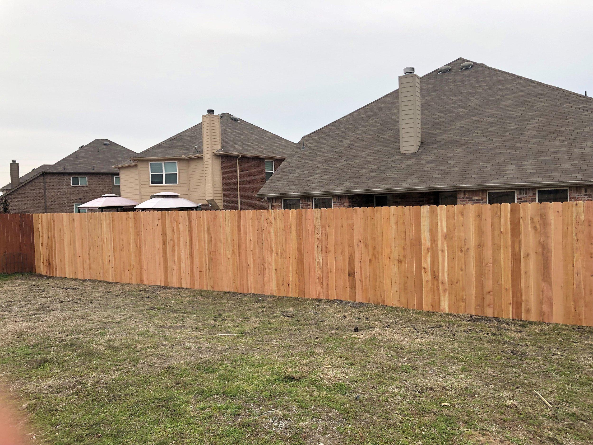 fence 4.jpg
