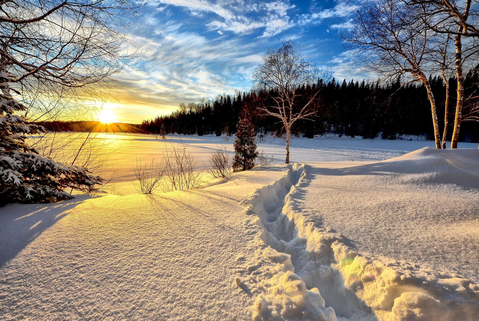 winter-landscape-636634_1920.jpg