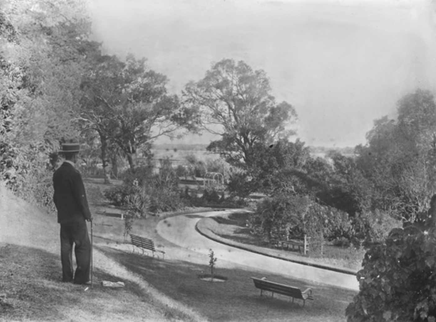 The road to the gate at the Claremont (now Crawley) end of Kings Park, early 1900s. Courtesy State Library of Western Australia, image 006187PD.