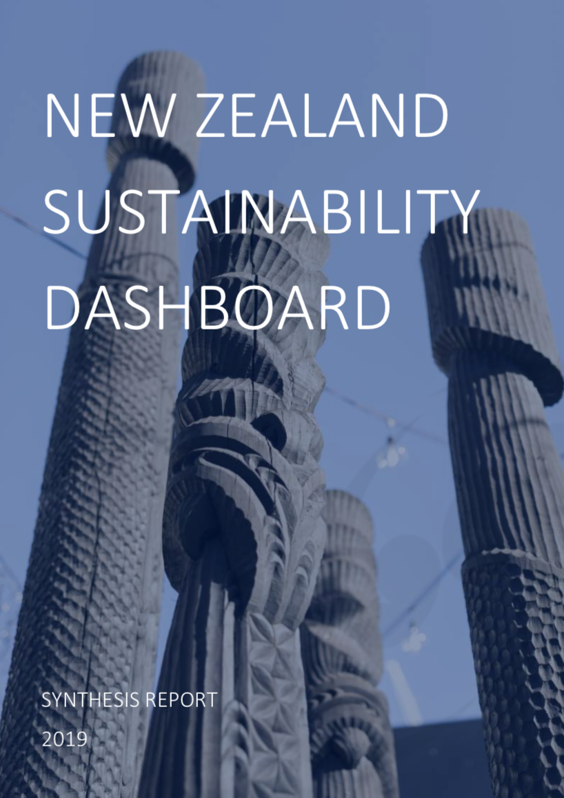 NZSD Synthesis Report 2019