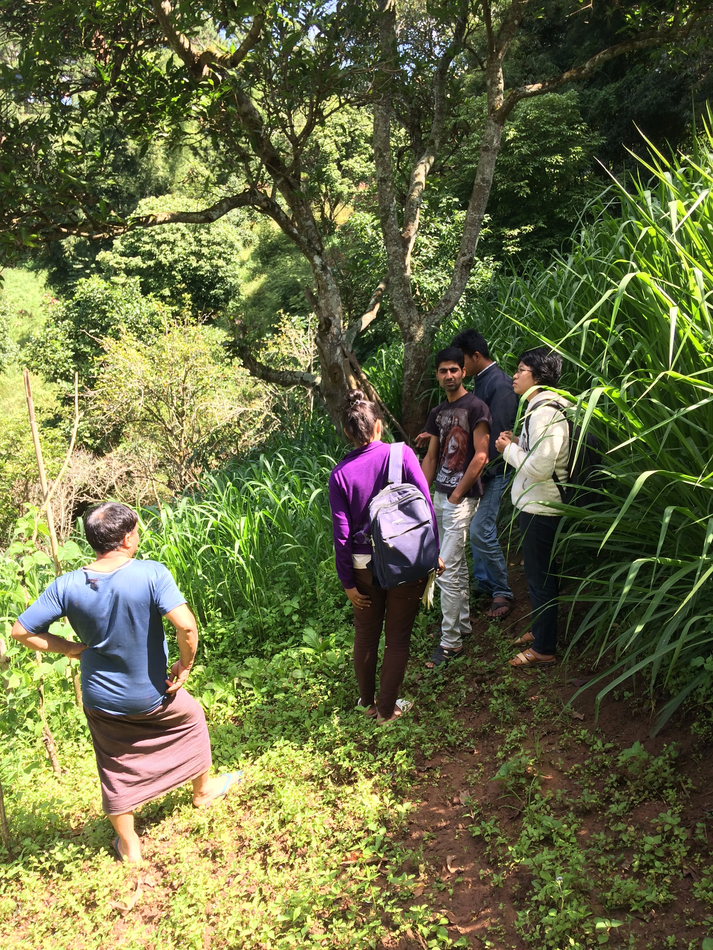 MDEP team checking up on U Mee Thray's pasture