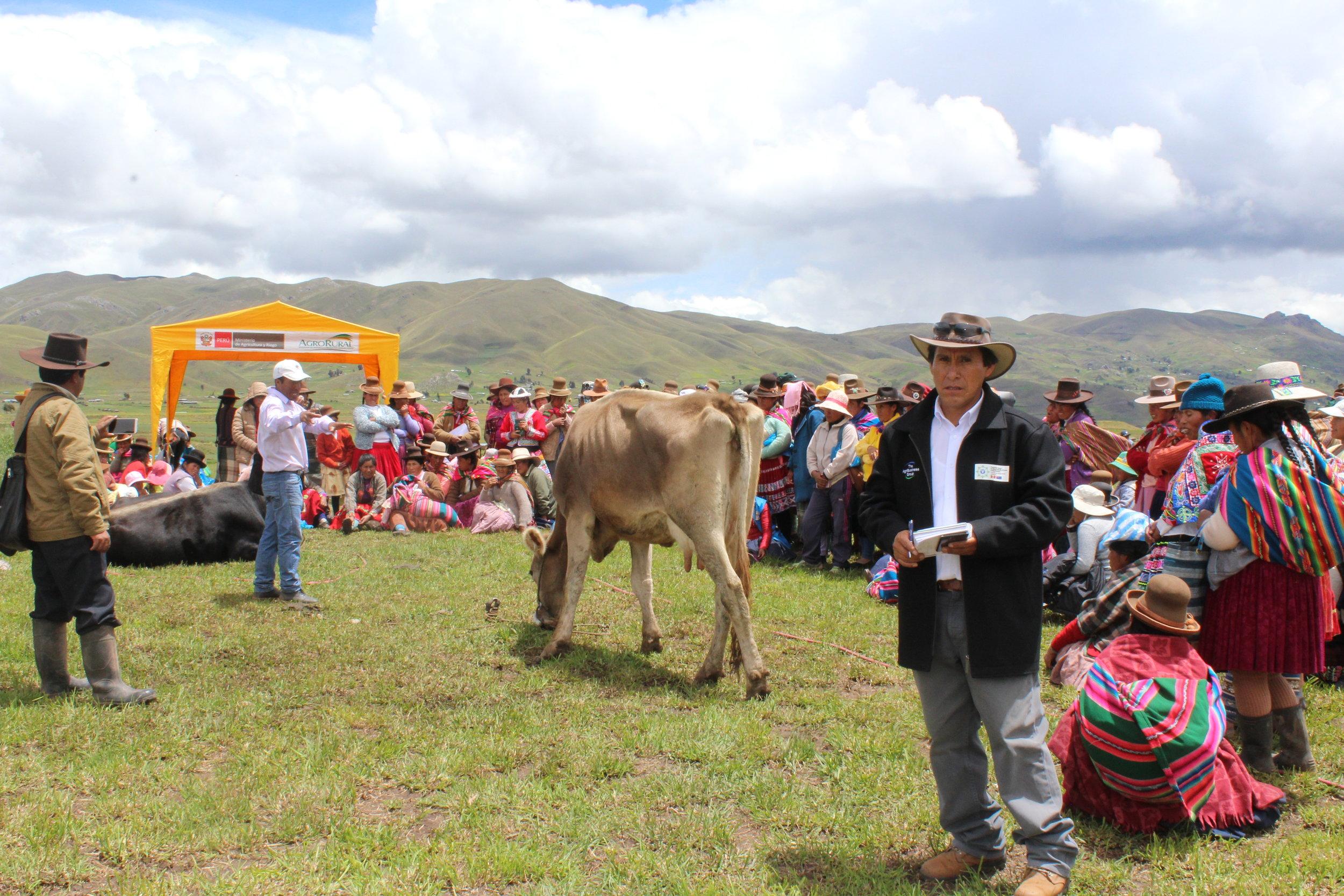 Ruben Garcia (RC-Cusco), Field Day in Layo, Cusco