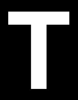 T-simple.JPG
