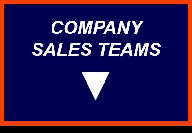 sales teams.png