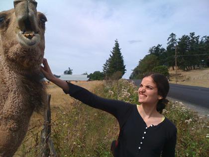 It's a camel. Her name is Mona. Friday Harbor, Washington.