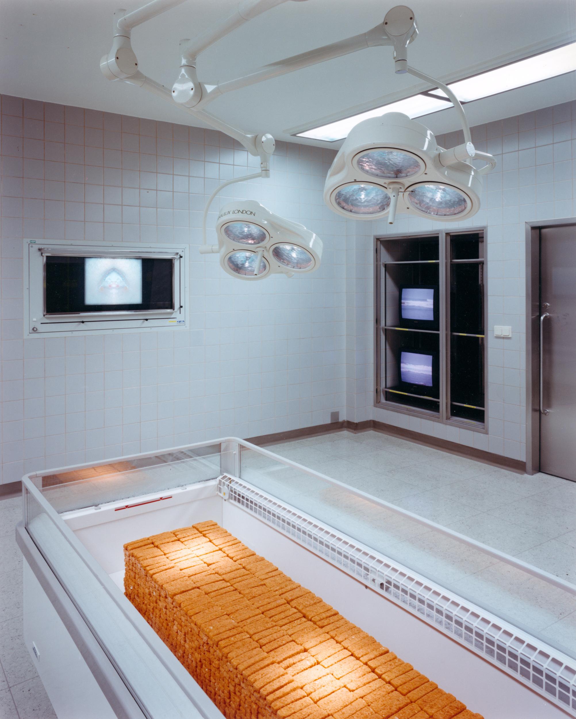Ausstellung LKH Wolfsberg