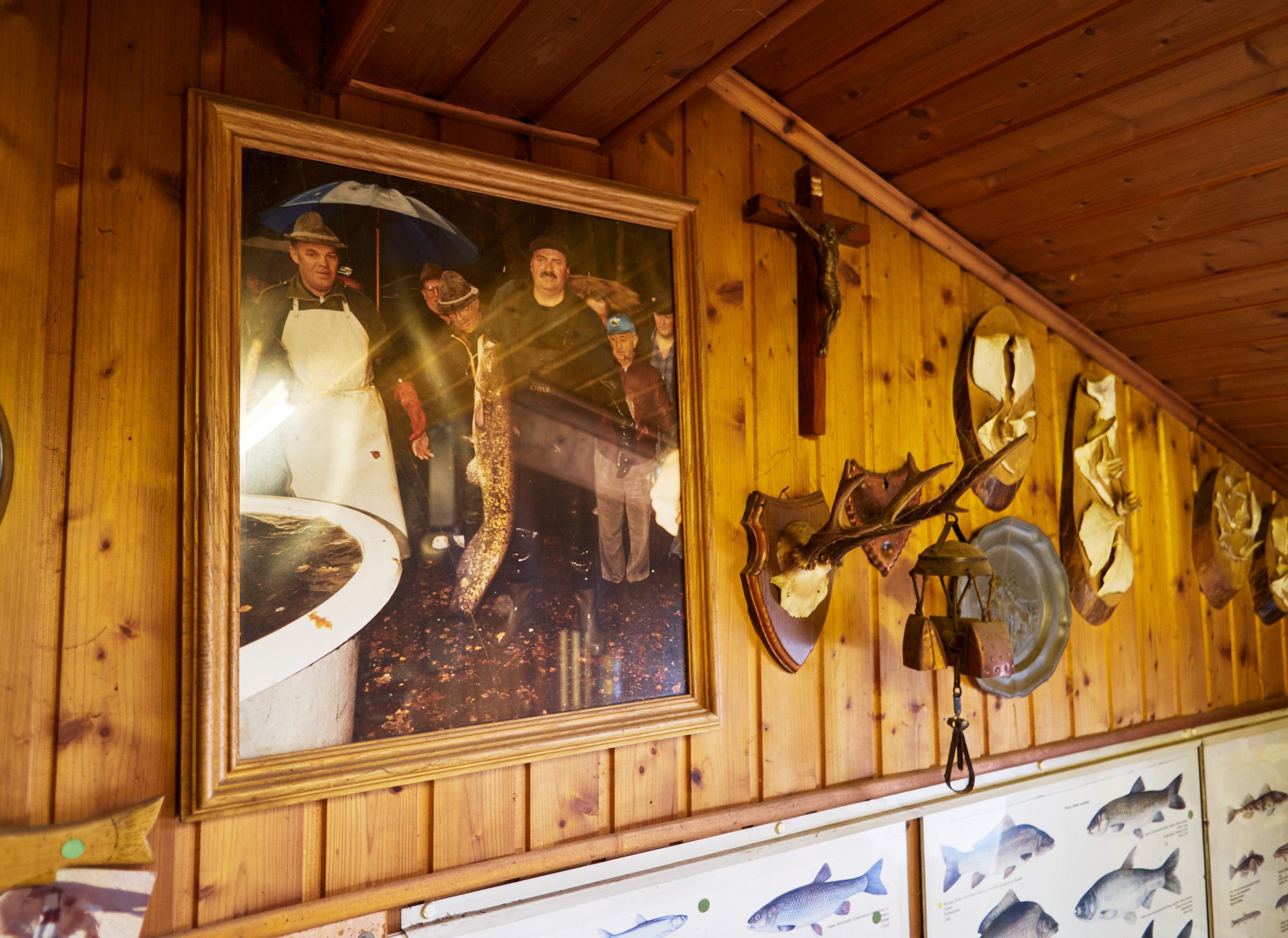 Hobby Fischereiverein Eliasteich Schrems 08.jpg