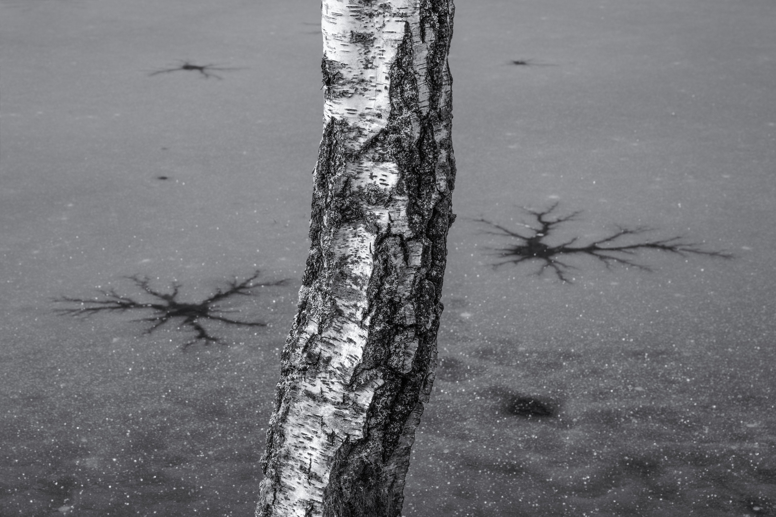 Cracks by Andy Clark
