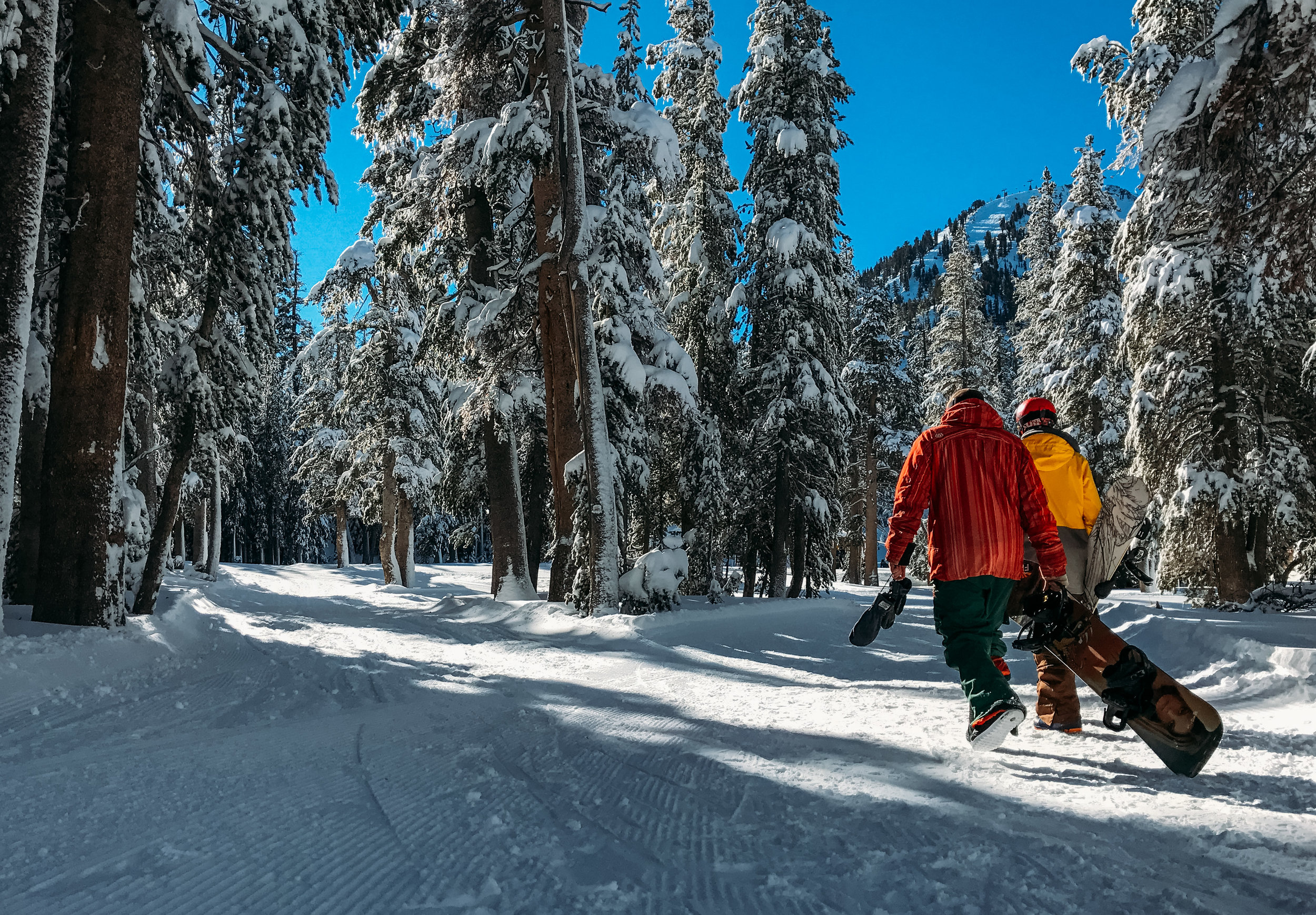 Walking with snowboards on Blackcomb Mountain on a bluebird day/.