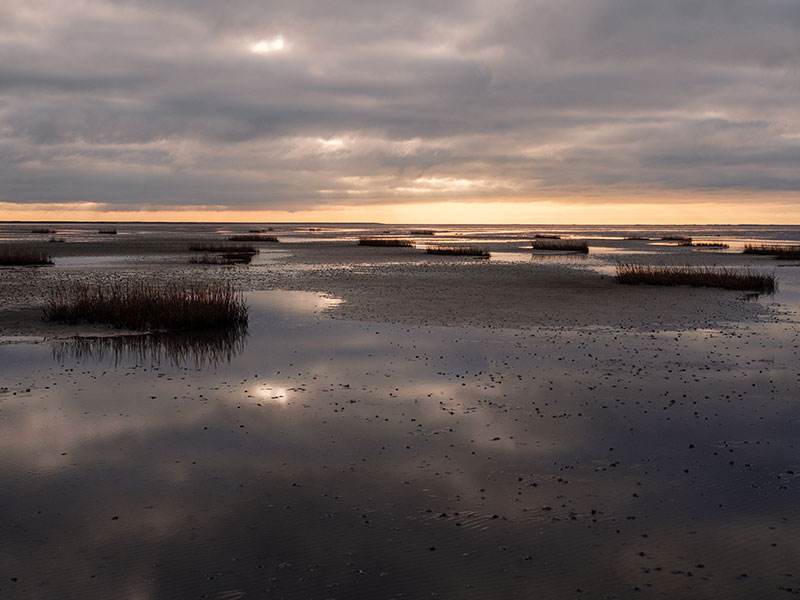 THE WADDEN SEA - LIGHT, SEA & LANDSCAPE