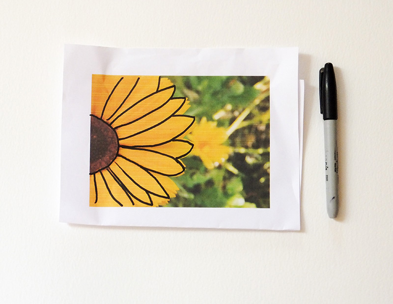 Sunflower tutorial 2 -jmpblog.JPG