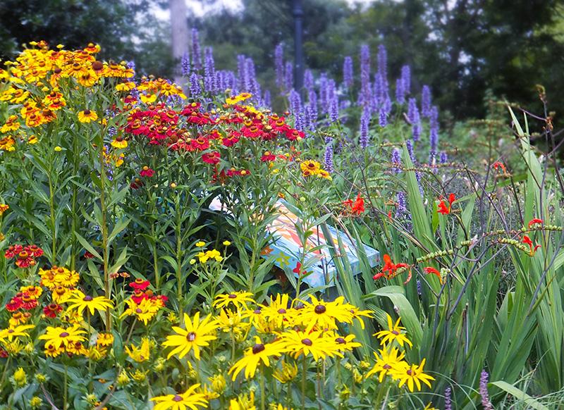 Arnot-hill-flower-garden-jmpblog.jpg