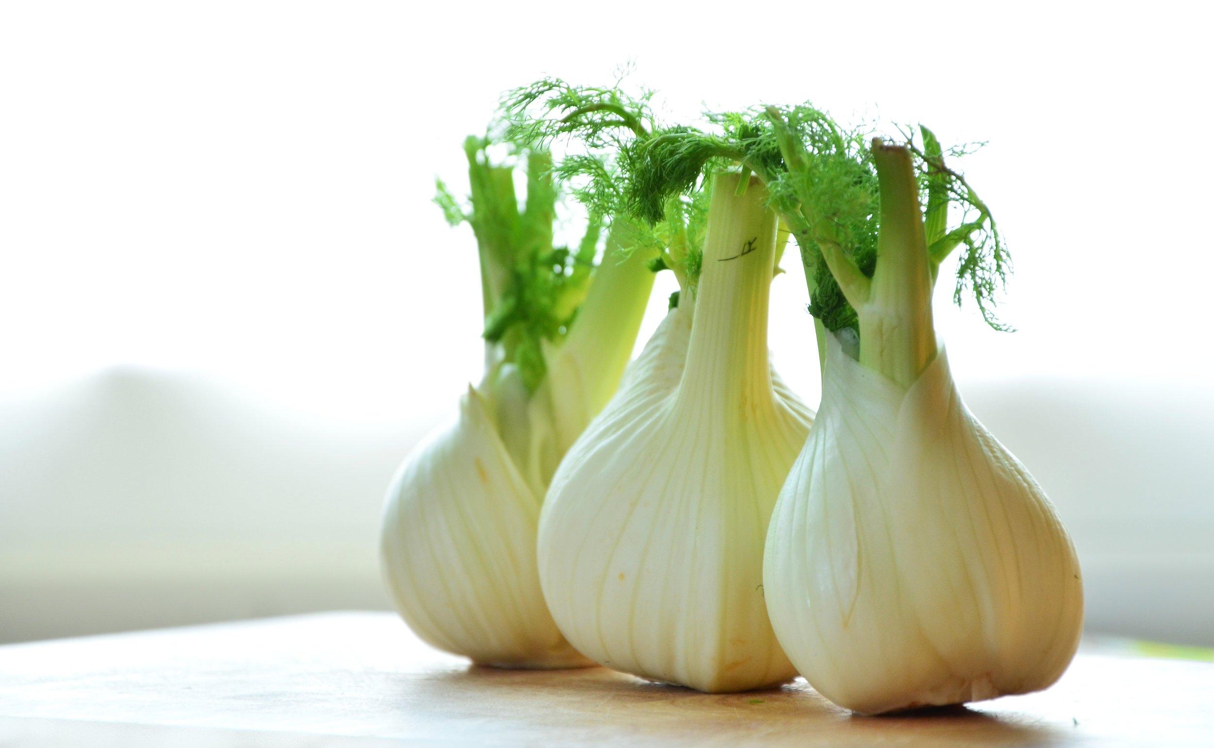 close-up-fennel-fennel-bulb-159471.jpg