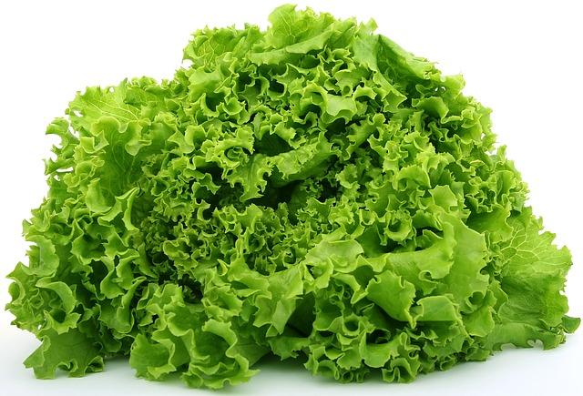 lettuce-1239155_640.jpg