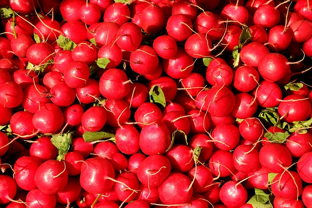 radishes-1623915_640.jpg