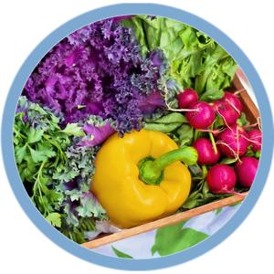 nutritionJlogoPG.jpg
