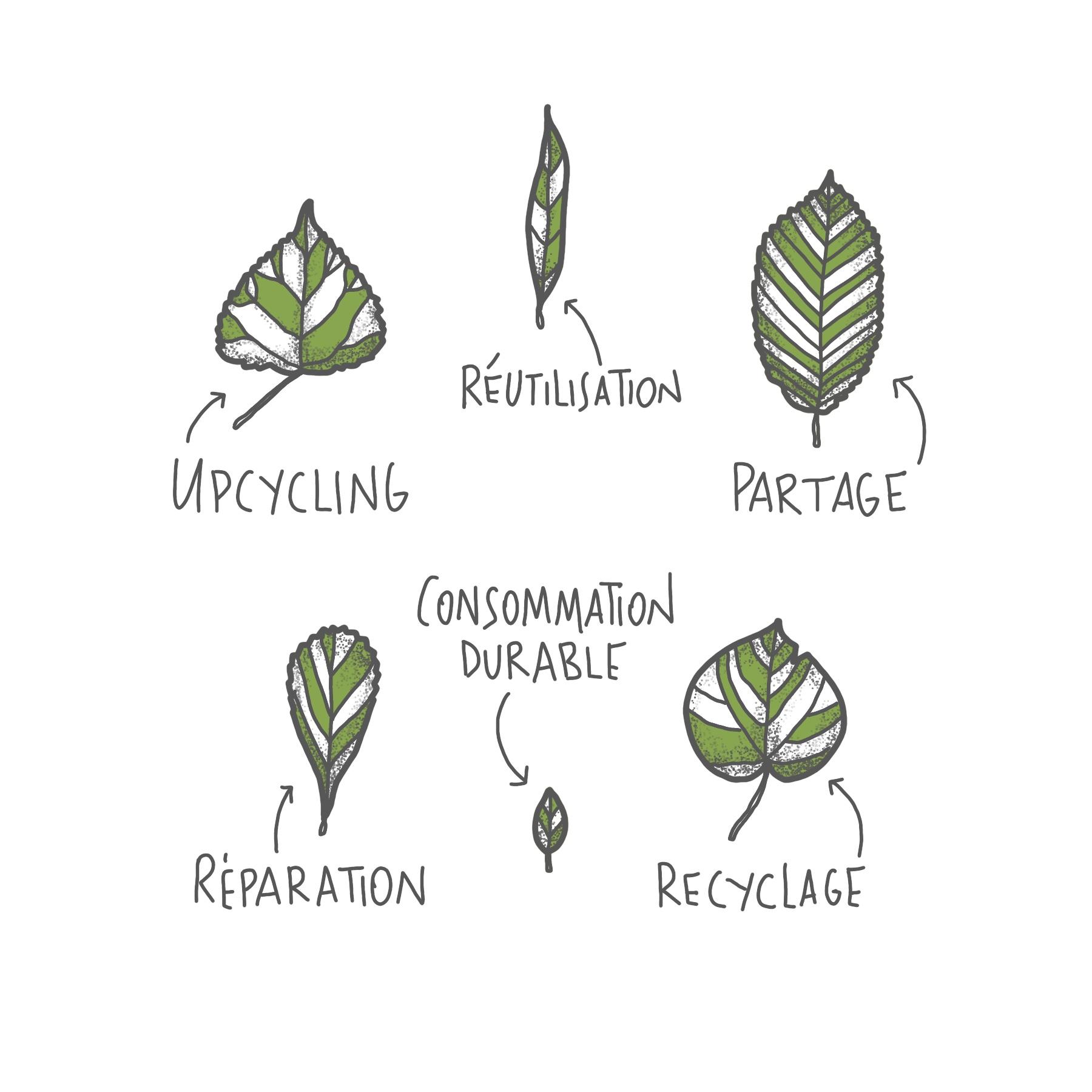- Chez Atelier Kami, chaque collaboration est comme la plantation d'un arbre. Tout commence par le choix de la semence. En fonction de l'essence choisie, l'arbre mettra plus ou moins de temps à se développer et aura un aspect différent selon ses spécificités.