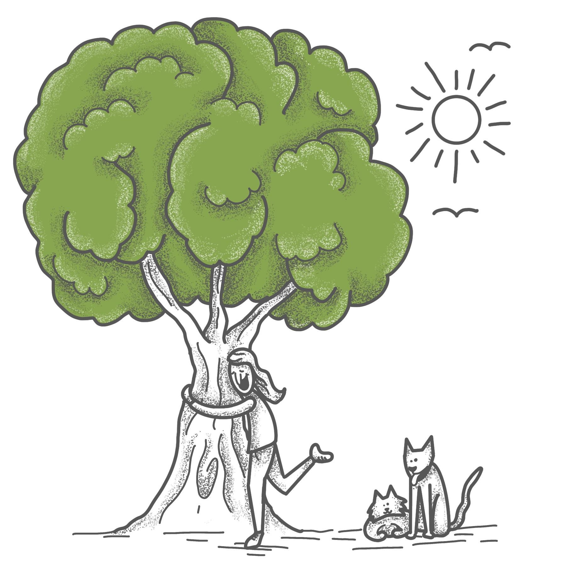 - L'arbre peut dès lors grandir et se développer en autonomie.