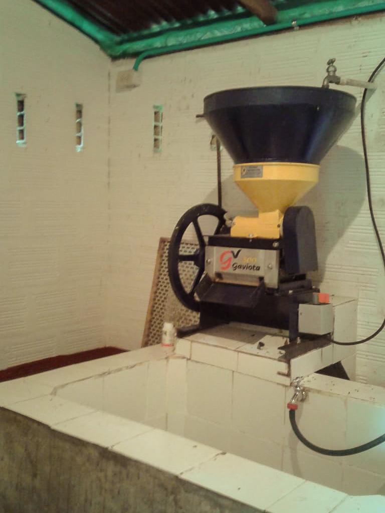 Machine à dépulper