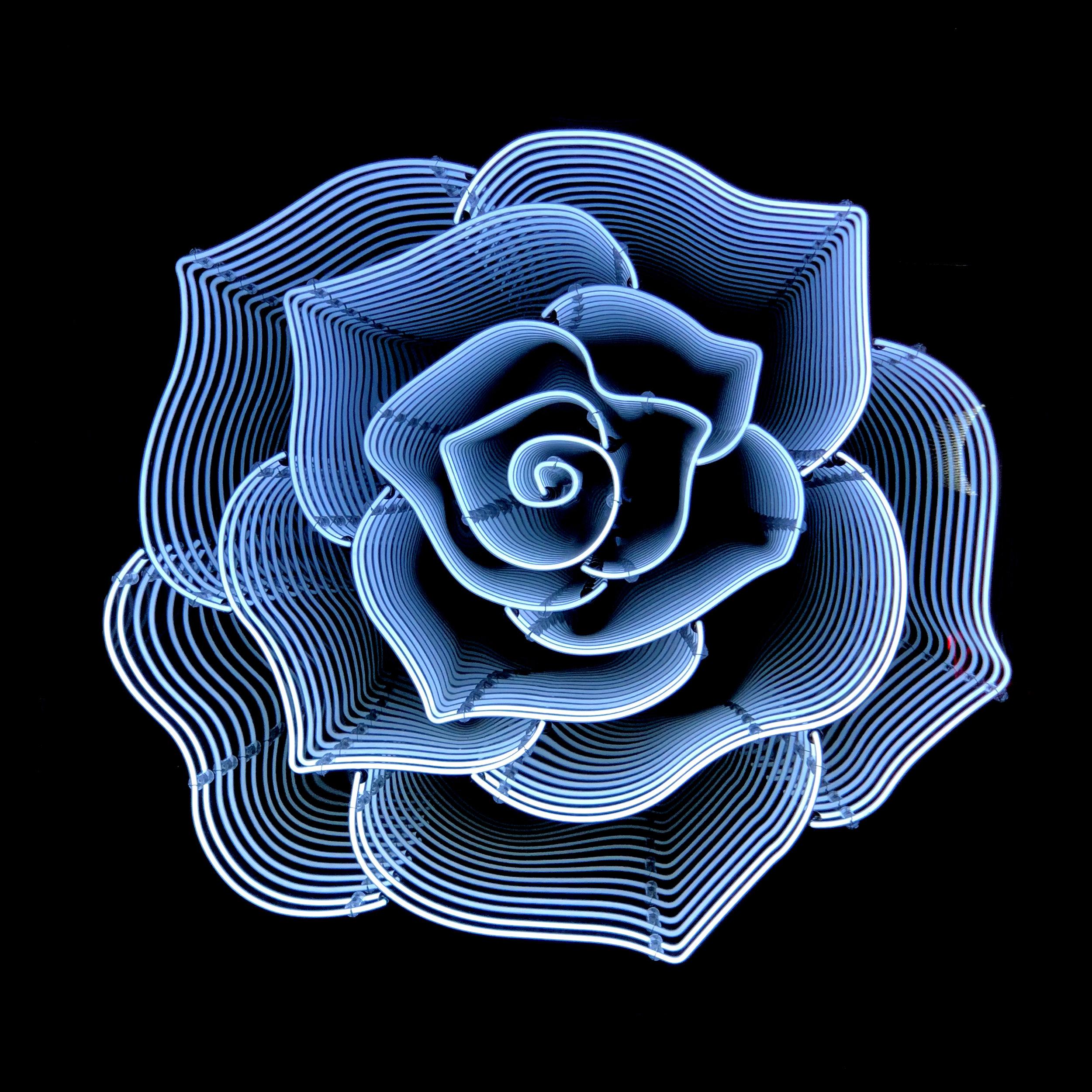 ROSE-BLANCBLEU.jpg