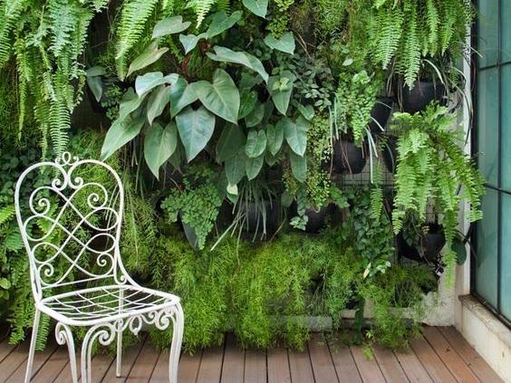 Vertical Greenery Wall