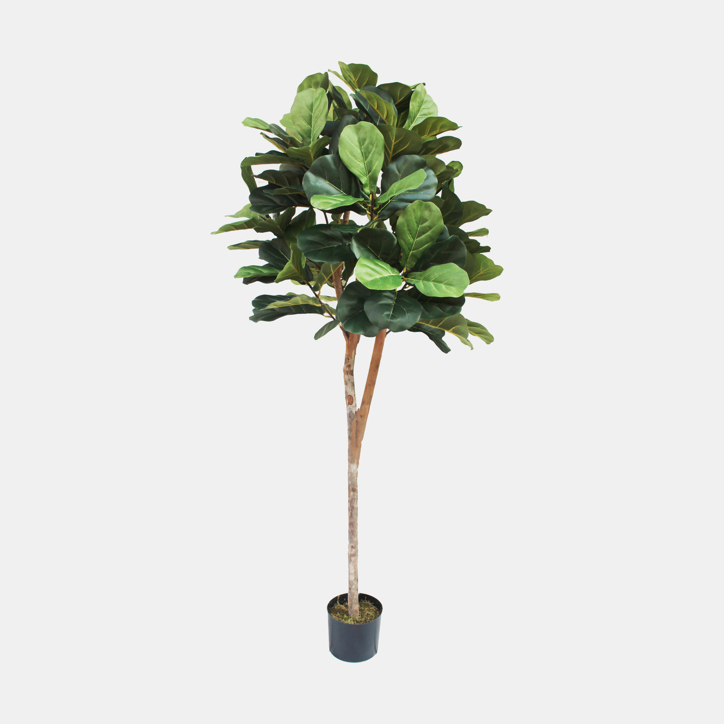Faux Fiddle Leaf Fig Tree  6' tall SKU8240SAF