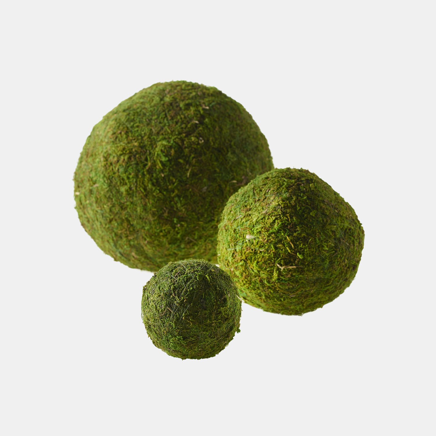 "Moss Spheres  Available in 4"", 6"", 8"", 10"", and 15"". SKU105948ACD"