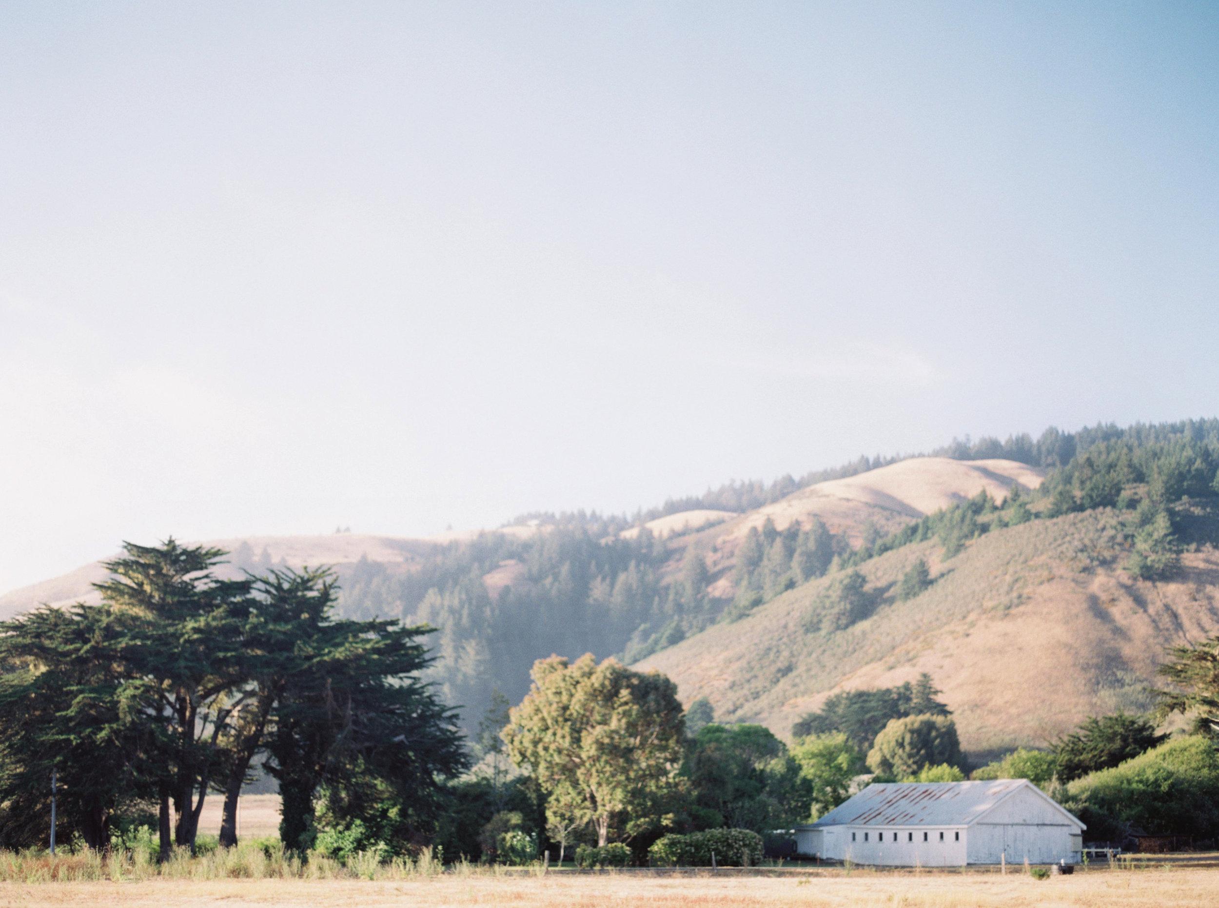 JenHuang-elk-california-11-8637_11.jpg