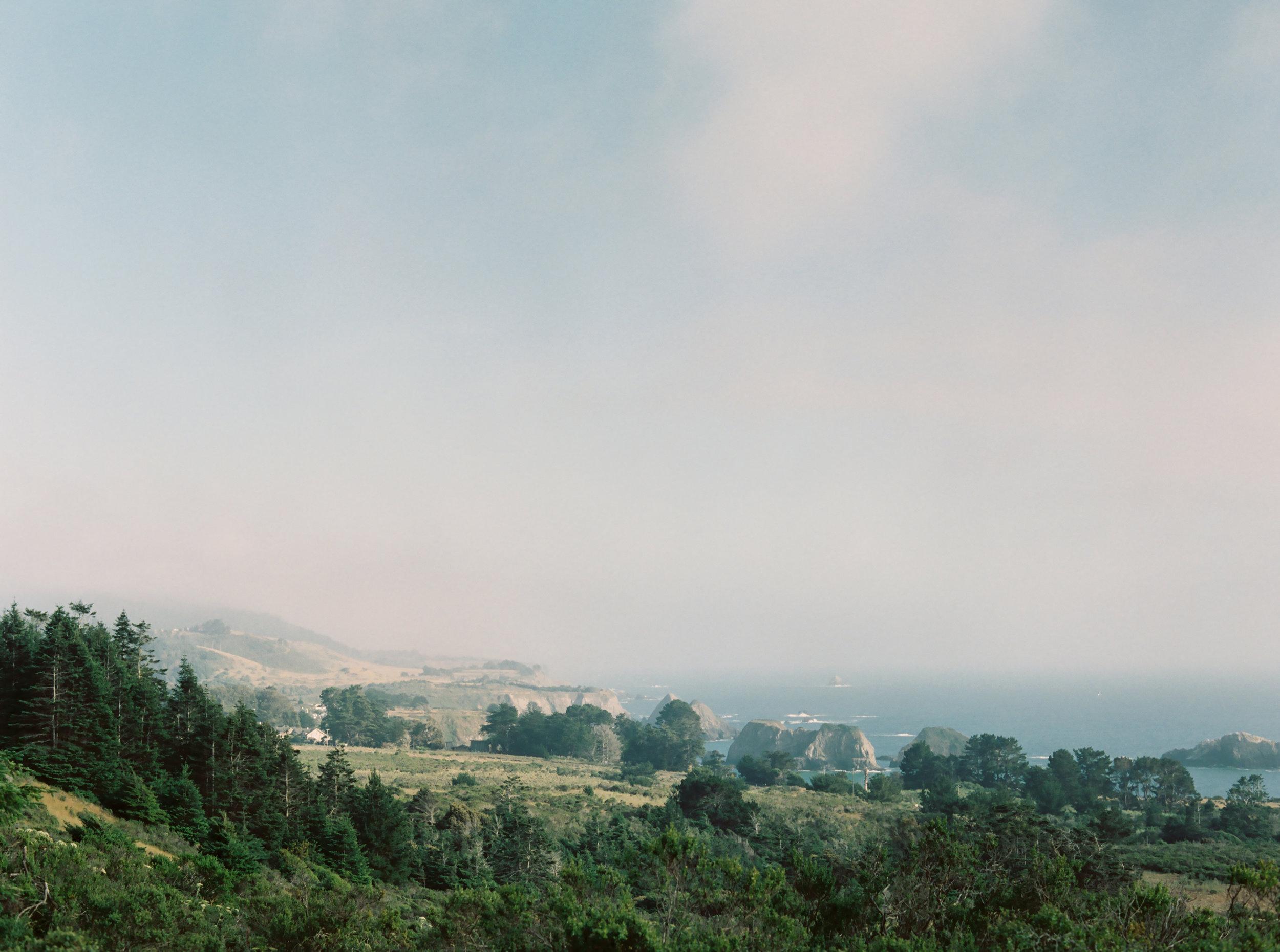 JenHuang-elk-california-21-8649_05.jpg