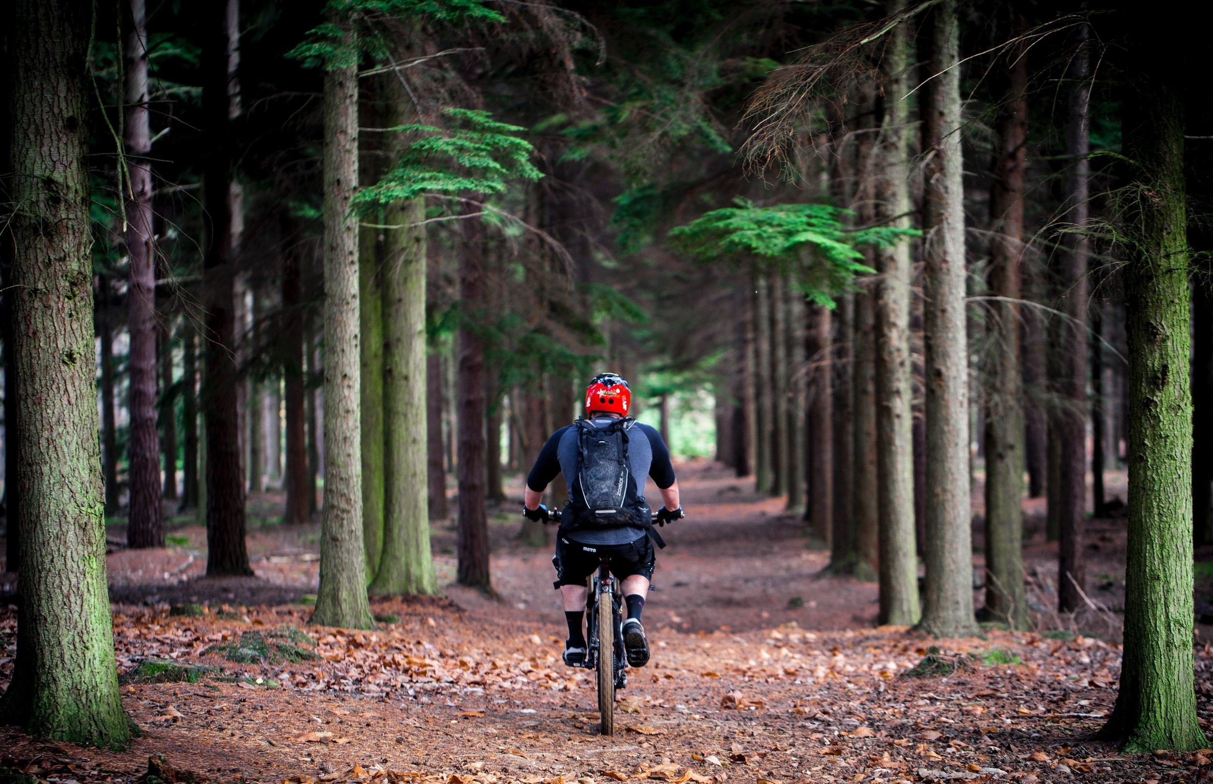 Hallmark Hotels bike and hike package
