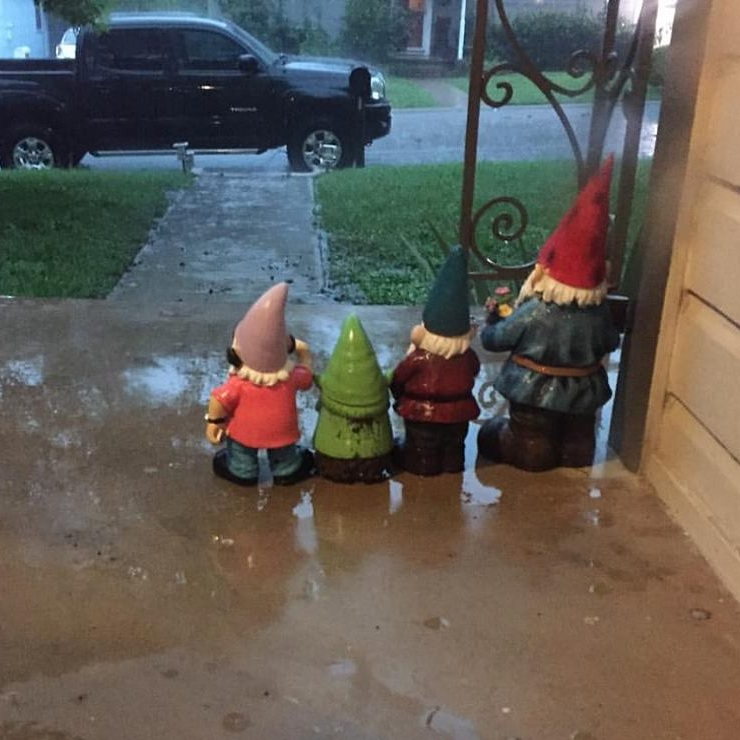 gnomes - yes, they all have gnames