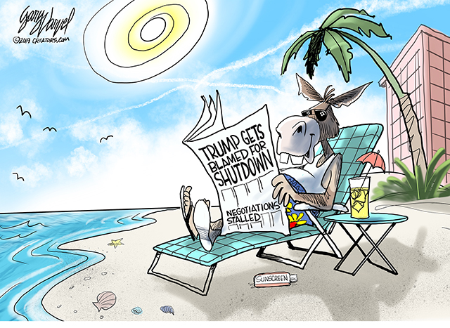 Democrats' vacation