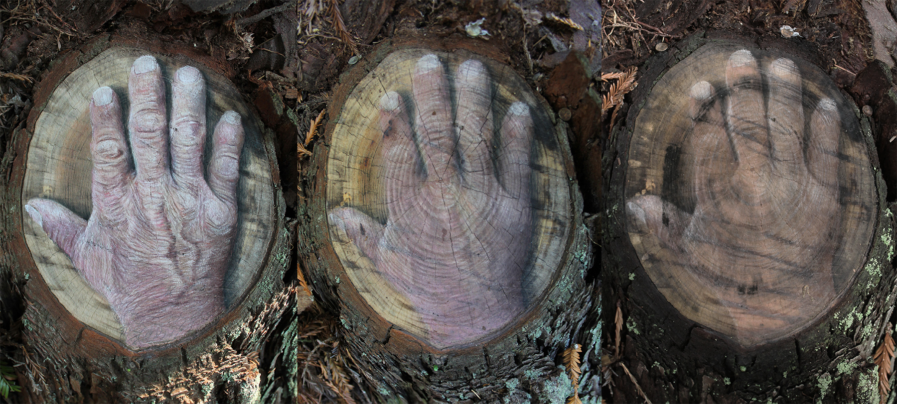 Hand Transition (over 6 months) - for web.jpg