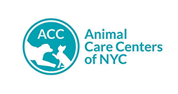 Copy of Animal Care Centers of NYC