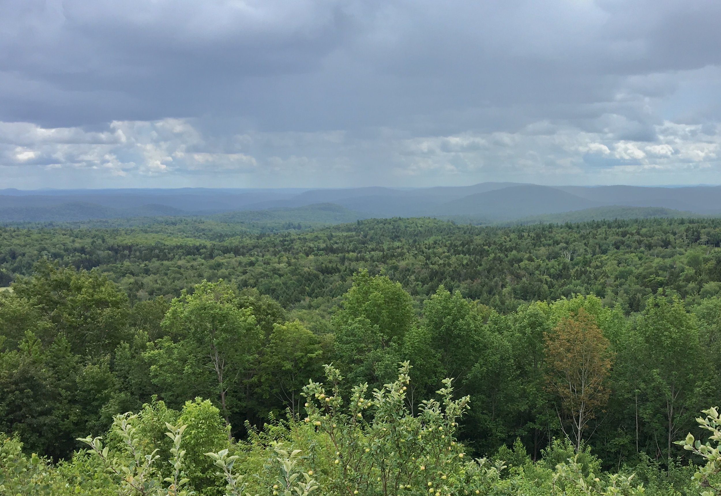 - The view from Hogback Mountain, about two-thirds of the way across Vermont, where one can see New Hampshire to the east (roughly straight ahead in the photo I think) and Massachusetts to the south.