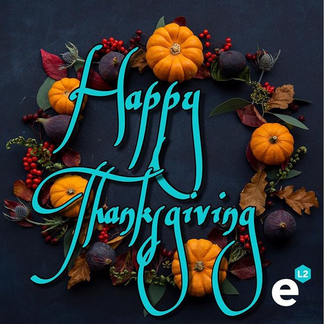 #HappyThanksgiving from our family to yours! We are grateful for all of our clients, colleagues and friends🦃 #ElementoL2