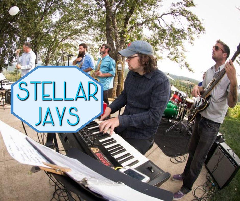 stellar jays.jpg