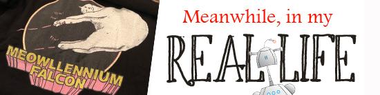 Real Life Meowlennium Falcon.jpg