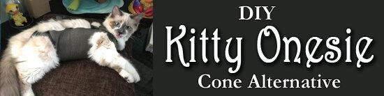 Kitty Onesie.jpg
