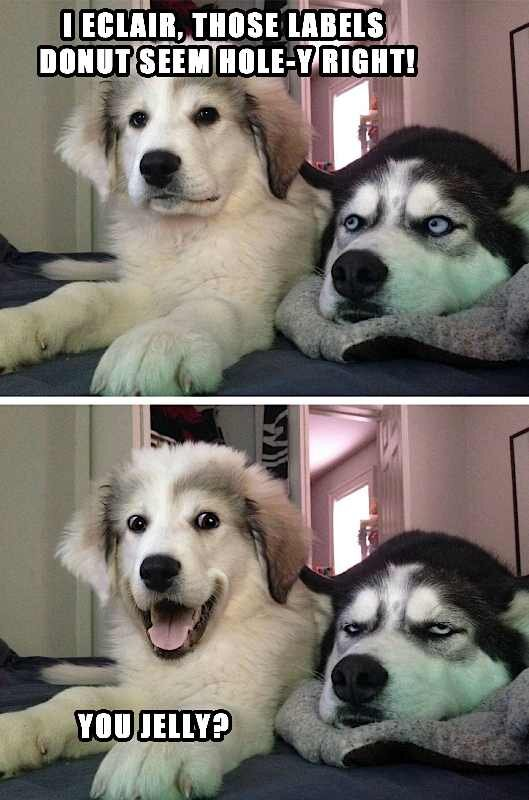 Dog Reaction Photo123412341234.jpg