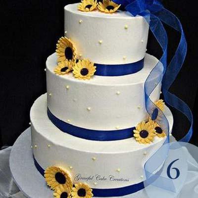 6_cake.jpg