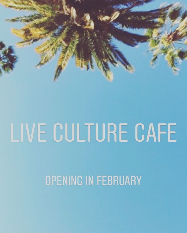 If you live in North County San Diego and you like local organic Kombucha on tap then your stoked because Live Culture is opening in Leucadia this February 🤙🏼 This is your new spot to drink local organic kombucha on tap, local cold brew coffee, live culture soft serve yogurt, sourdough French baguette sandwiches, and gluten free baked goods 🙌  Location listed in bio above 👆