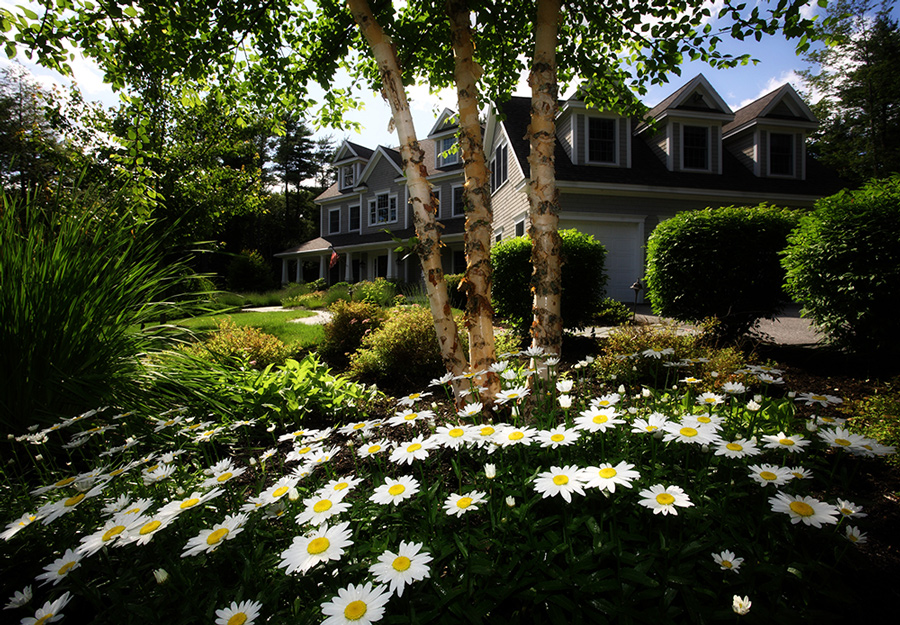 Suburban home with beautiful landscaping