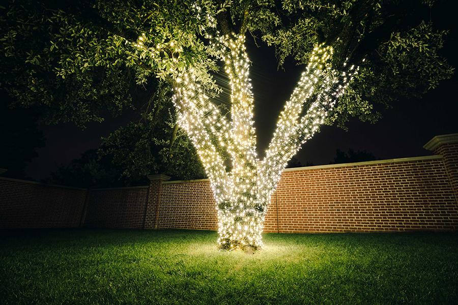 Lighting-CoffeyComplete-Nichols-Night-00009.jpg