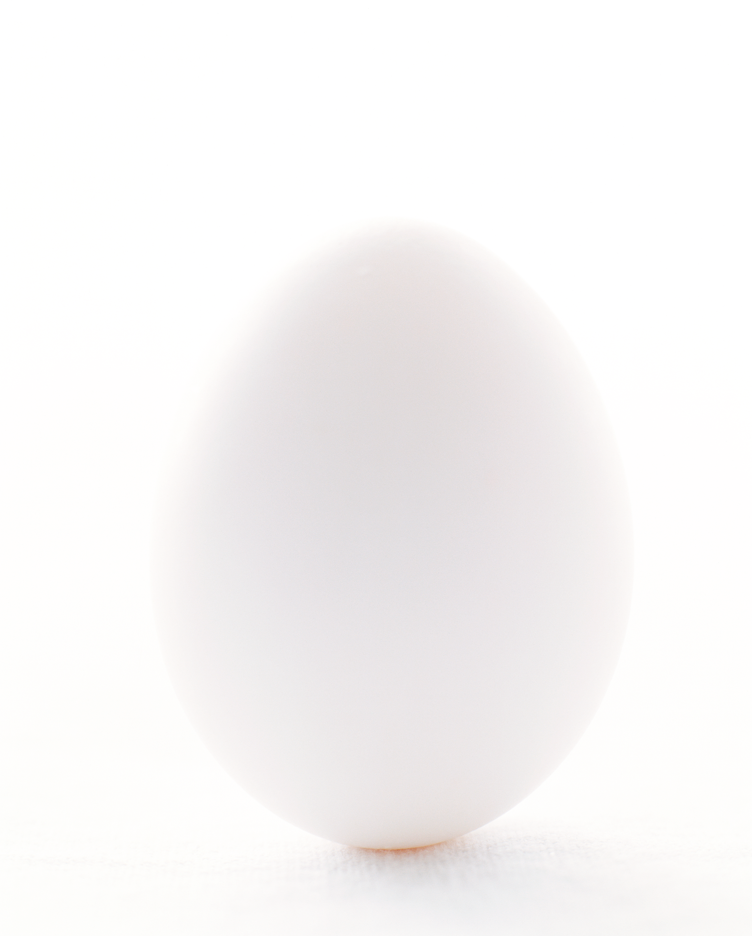 7_egg.png